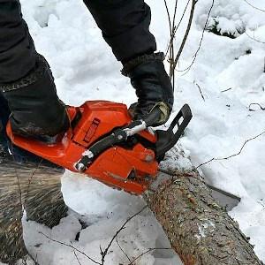chainsaw cutting winter